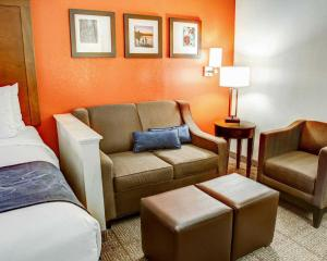 Comfort Suites Tyler South, Hotels  Tyler - big - 9