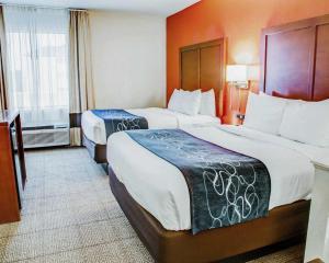 Comfort Suites Tyler South, Hotels  Tyler - big - 8