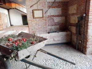 Agriturismo La Sophora, Appartamenti  Montegaldella - big - 91
