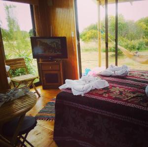 Hare Pa'omotu, Prázdninové domy  Hanga Roa - big - 2