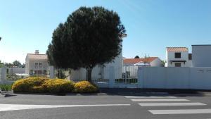 obrázek - Maison avec Jardin privé