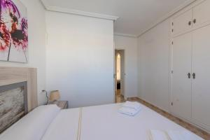 Bennecke Pinet, Apartmány  La Marina - big - 13