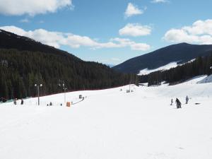 Apex Mountain Inn Suite 323-324 Condo, Ferienwohnungen  Apex Mountain - big - 17