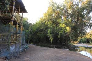 The Brook Ville, Rezorty  Sasan Gir - big - 3