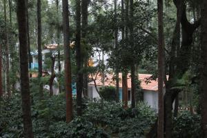 The Inchara HomeStay, Agriturismi  Attigundi - big - 13