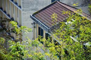 Sul duomo, Holiday homes  Salerno - big - 14
