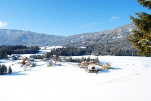 Hotel Gasthof Seeblick, Penzióny  Zeutschach - big - 57