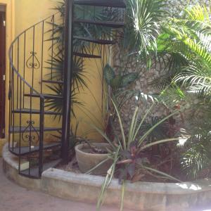 Casa Venus, Dovolenkové domy  Mérida - big - 16