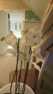 Trinity Boutique B&B, Bed and Breakfasts  Peterhead - big - 21