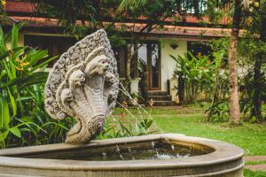 Terres Rouges Lodge, Hotely  Banlung - big - 118