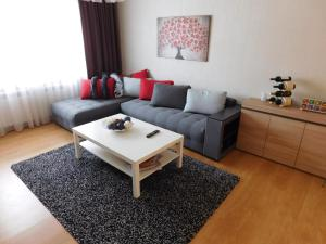 Apartment in top center, Appartamenti  Sofia - big - 9