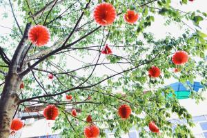 Chengdu Dreams Travel International Youth Hostel, Ostelli  Chengdu - big - 47