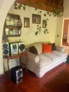 Los Pinos Reñaca, Загородные дома  Винья-дель-Мар - big - 7