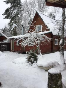 Селигер, Dovolenkové domy  Ostashkov - big - 26