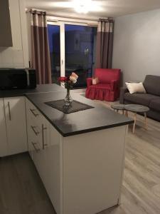 Studio 35 m2 cosy - Apartment - Royat