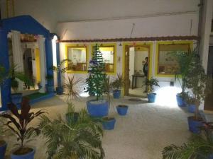HosteLaVie - Varanasi, Hostely  Varanasi - big - 72