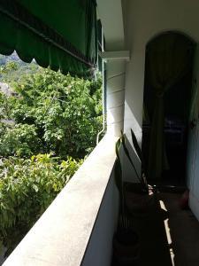 Apt. Cosme Velho, Ferienwohnungen  Rio de Janeiro - big - 16