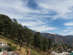 Shova's Nest, Ubytování v soukromí  Dharamshala - big - 15