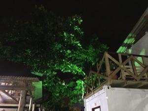 Eco Container Pousada, Affittacamere  Florianópolis - big - 19