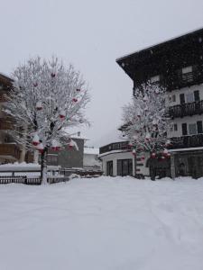 obrázek - Hotel Garni Suisse