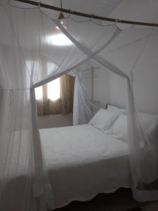 Casa da Mangabeira, Апартаменты  Транкозу - big - 2