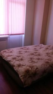 1 комнатная квартира Центр Одесса, Апартаменты  Одесса - big - 8