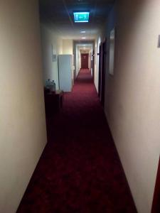 Tanagra Hotel, Hotels  Vilnius - big - 100