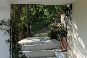 Guesthouse Kleopatra's, Vendégházak  Cangaráda - big - 2