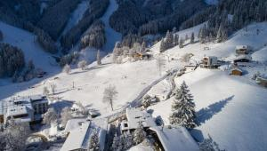 Sunny Ferienwohnungen Ski In - Ski Out, Apartmány  Zell am See - big - 77