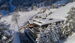 Sunny Ferienwohnungen Ski In - Ski Out, Apartmány  Zell am See - big - 78