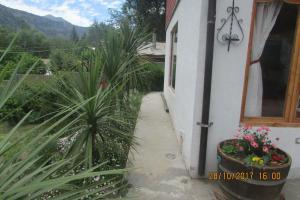 A Picture of Cabañas Colibri