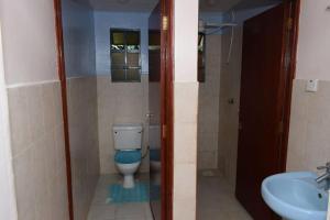 Emirates Villa, Apartmanok  Nairobi - big - 7