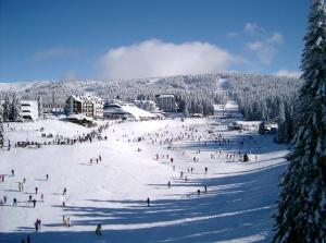 Konaci 2, Apartments  Kopaonik - big - 2