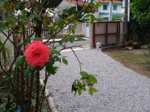 Casa da Vovó no Campeche, Dovolenkové domy  Florianópolis - big - 2