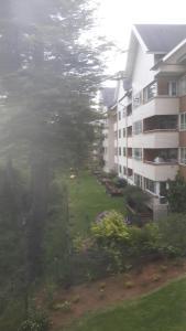 Porhtal, Ferienwohnungen  Valdivia - big - 33