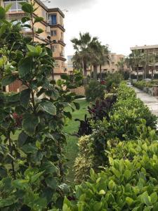 Zahrat Al Mamora, Appartamenti  Alessandria d'Egitto - big - 27
