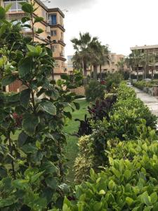 Zahrat Al Mamora, Apartmanok  Alexandria - big - 27