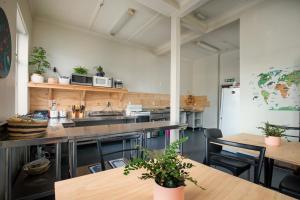 obrázek - Dunedin Central Hostel