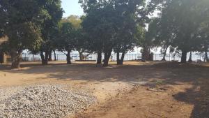 Lake View Guest house, Vendégházak  Mangochi - big - 28