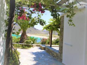 Panormos Village, Hotels  Panormos Mykonos - big - 3