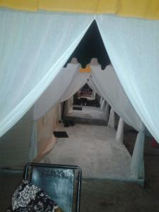 Leopard nature camp, Luxury tents  Bāli - big - 5