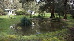 Banksia Lake Cottages, Case di campagna  Lorne - big - 7