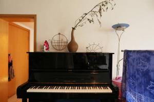 MayaFang- Piano APT Apartment