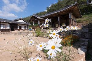 Nosongjung Jongtaek, Vendégházak  Andong - big - 29