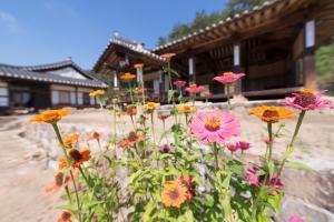Nosongjung Jongtaek, Vendégházak  Andong - big - 27