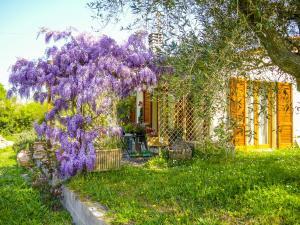 Casa Violet, Appartamenti  Portoferraio - big - 8