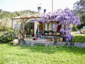 Casa Violet, Appartamenti  Portoferraio - big - 18