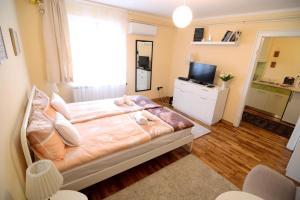 Singidunum apartment, Apartmanok  Belgrád - big - 26
