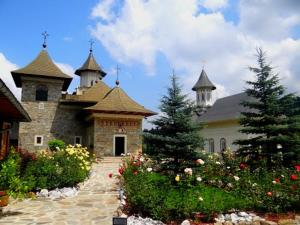 Pensiunea Madalina, Гостевые дома  Путна - big - 45