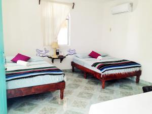 Casa Azul, Hotels  Holbox Island - big - 29